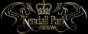 Kendall Park Friesians
